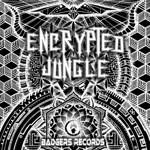 hightech psytrance music album for free - encrypted jungle - download wav now
